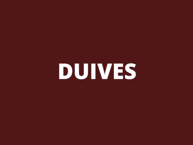 Logo | Duives International B.V.