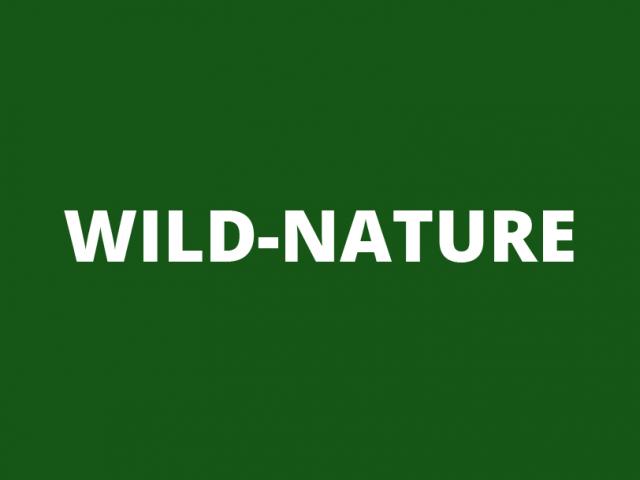 Logo | Wild-Nature